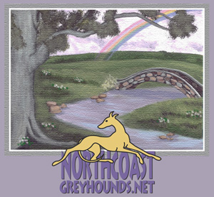 Rainbow Bridge - NorthcoastGreyhounds.net
